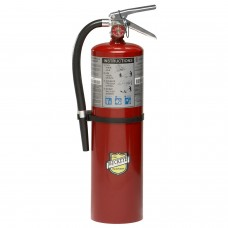 Buckeye 10 Lb. ABC Dry Chemical Fire Extinguisher W/ Wall Hook 4-A:80-B:C