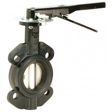 "Cast Iron Wafer Butterfly Valve 2"" 200 PSI EPDM"